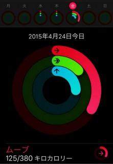 Apple Watchを購入したので一日使ってみた使用感、感想、レビューなどを_アクティビティ_10